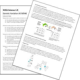 S1.9 Genetic Variation EX